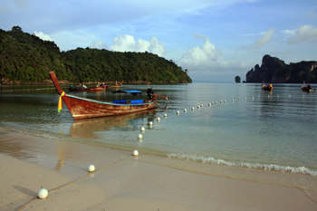 Families fish with nets in the early morning light at Loh Dalam Beach Phi Phi Thailand