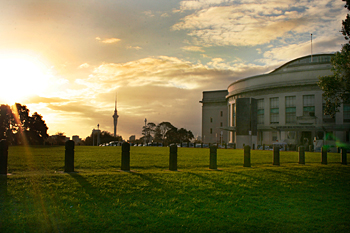 Sky Tower in the distance as sun sets over Auckland Domain New Zealand