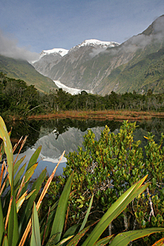Peter's Pool in Franz Josef New Zealand