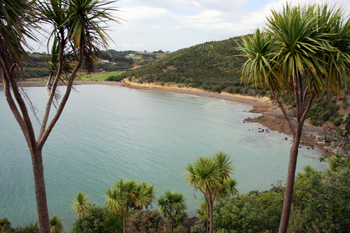 Tramping the trails on Waiheke Island New Zealand