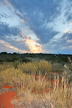 The desert surrounding Ayers Rock (Uluru) at sunset Australia