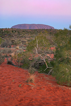 Ayers Rock (Uluru) at sunset Australia