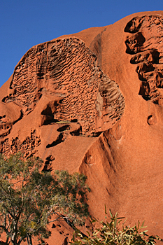 The Brain, a feature eroded in the surface of Ayers Rock (Uluru) Australia