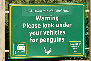 Funny sign on the Cape Peninsula South Africa