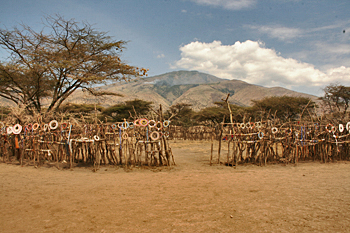 Maasai kral in the Ngorongoro Conservation area Tanzania