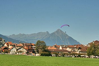 Paraglider comes in for a landing over Hohe Matte in Interlaken Switzerland