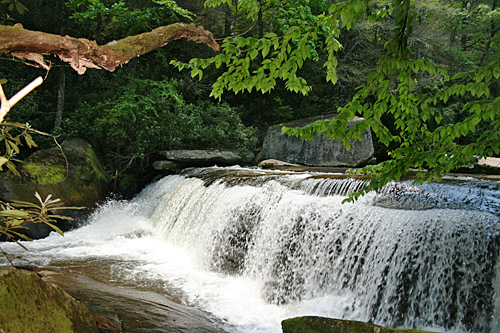 Smaller falls on the French Broad River, on the way to Bird Rock Falls
