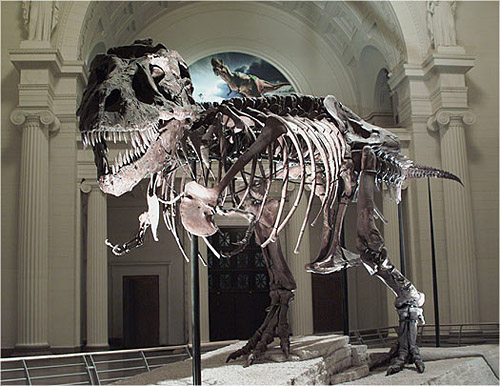 Chicago_Field_Museum_Dinosaur_Named_Sue