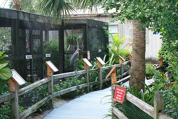 Peace River Wildlife Center in Punta Gorda Florida