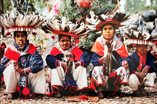 In 1980, the journey to the sacred peyote desert lasted 87 days, including a deer hunt for a sacrifice and visits to many gods in the mountains. In this photo, the Ulucuacame, or Peyote Captain, is accompanied by his second in command, his eight-year old son, and the principal musician for the journey. Photo from the Colette Lilly Archive, courtesy of Museo Zacatecano. Museums of Zacatecas