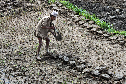 During my trek to Nagarkot, this man was preparing a field for a new potato crop with rustic hand tools