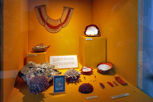 Ancient Spondylus jewelry and artifacts at Salango Museum