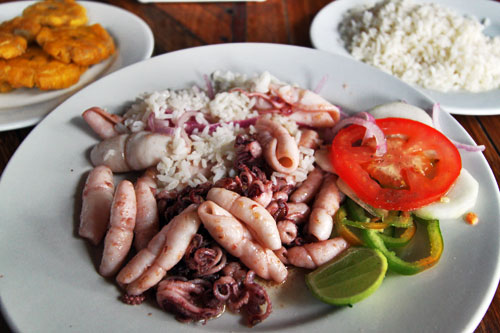 Fried calamari with rice and platanos (fried green plantains), a favorite on the coast of Ecuador
