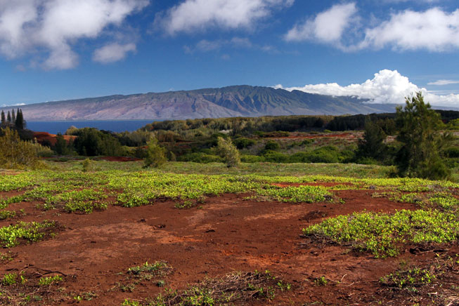 Rich red volcanic soils, topped by charteuse vegetation and framed by blue and purple mountains of Moloka'i