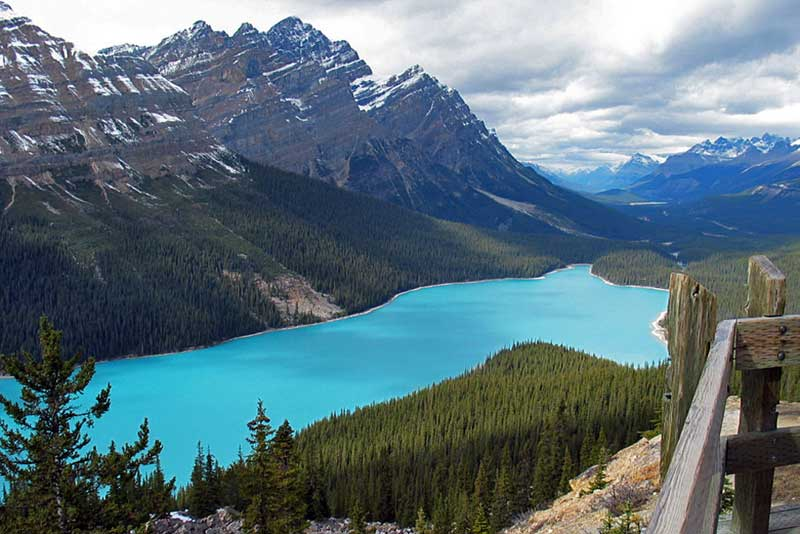 Gorgeous Glacial Peyto Lake Nestled in an Alpine Valley in Banff National Park, Canada
