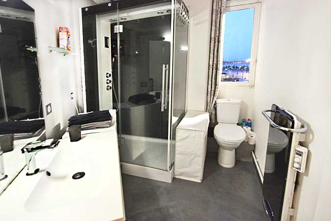 Bathroom, complete with multi-jet shower and washing machine Bordeaux France