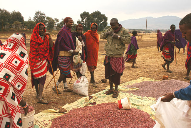 Attending the Red Market while living with the Maasai in Monduli, Tanzania