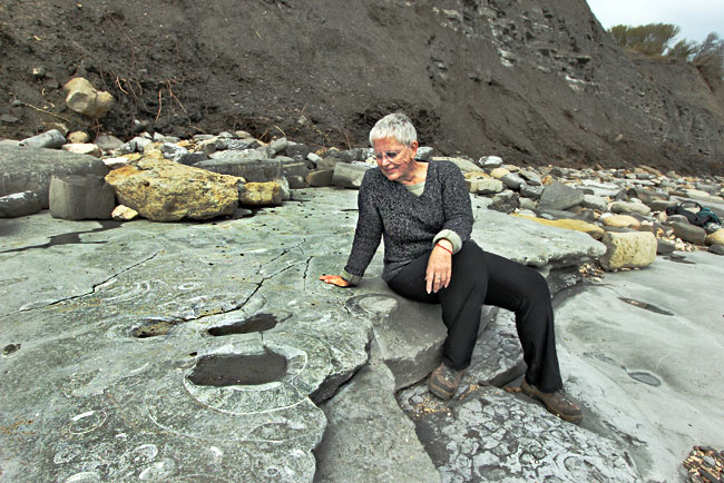 "I examine scores of fossils on the ""Ammonite Pavement"" in Lyme Regis"
