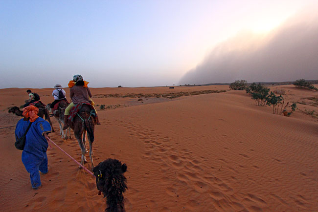 Halfway through our camel ride the sandstorm climbed the dunes and hit us full force