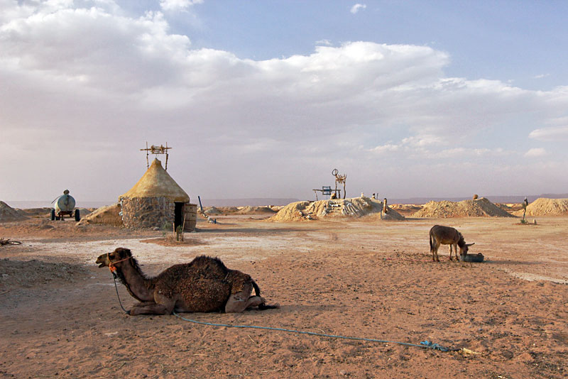 Camel Rests in Front of Dry Wells That Once Served Traders on Caravan Routes Through the Moroccan Desert