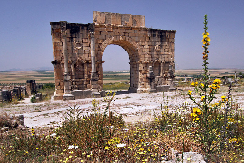 Arches and Mosaic Floors in the Ruins of Volubilis, Morocco Hint at the Wealth of This Third Century Roman Town