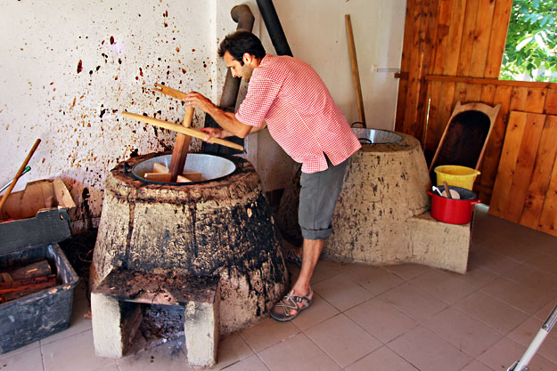 Ambrus Barabas, a partner in the Panyola Co-Op, readies the cooking vats prior to harvest