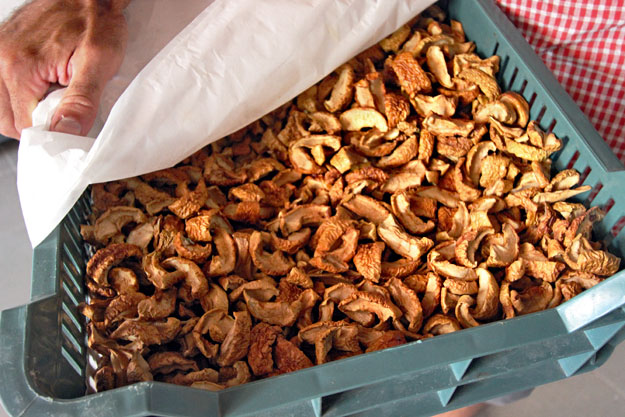 Dried apples are just one of many products made from locally grown fruits by the Panyola Co-Op