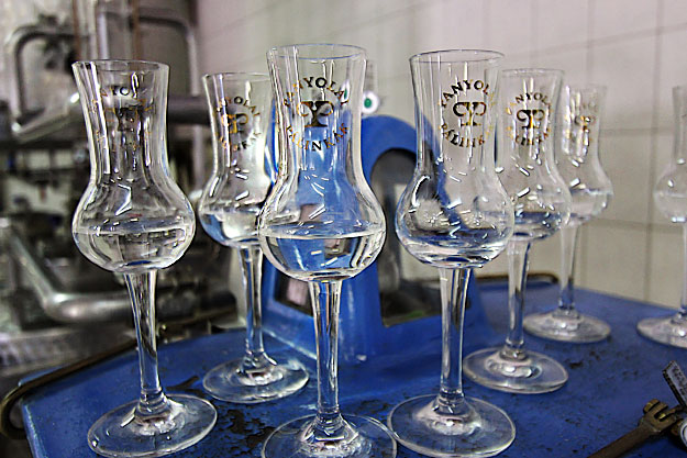 Tulip-shaped crystal goblets, said to be the best for capturing the fragrance of Hungarian Palinka, are used for sampling at the distillery