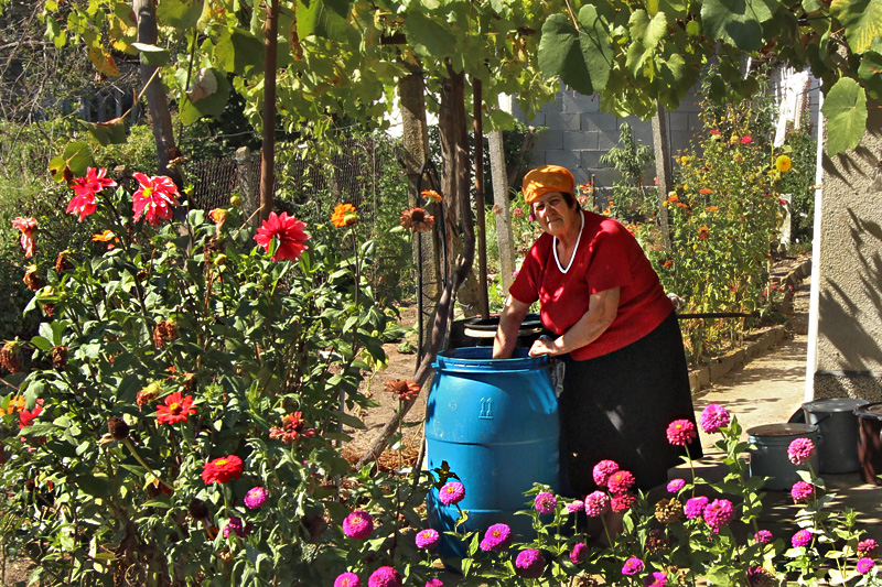 Making Rakia, a Potent Alcohol Produced from Local Grapes, in the Town of Yasna Polyana, Bulgaria