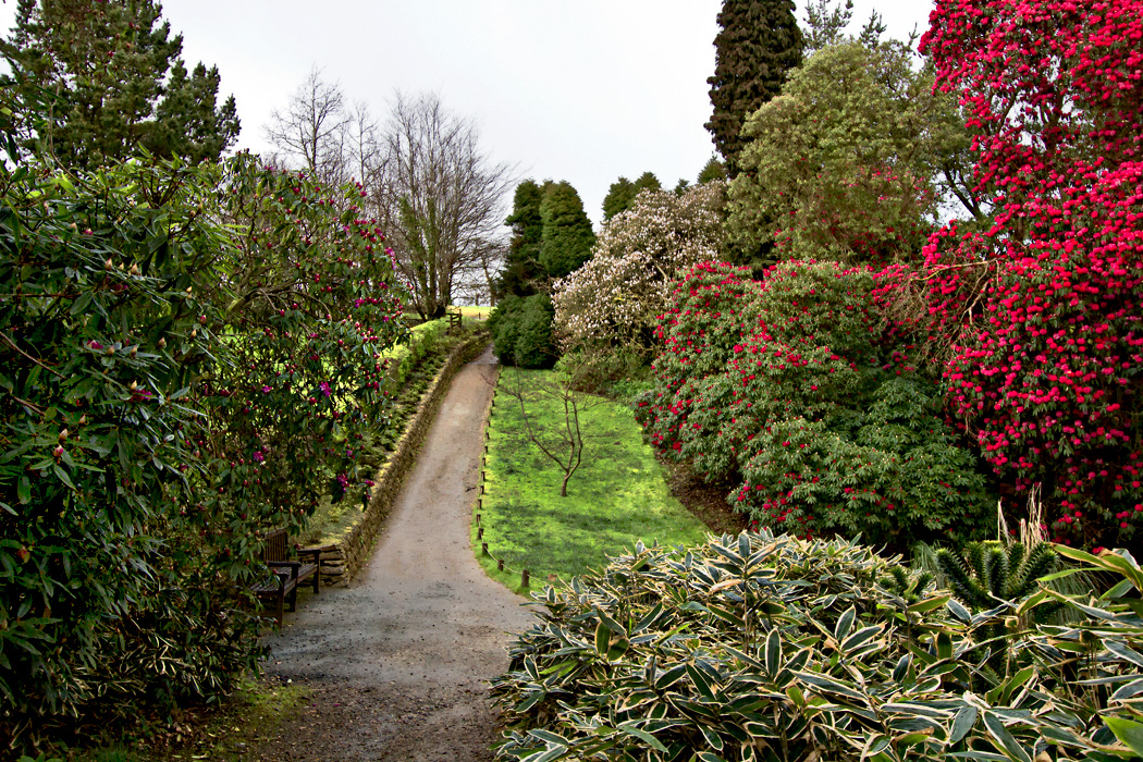 Each spring, trees, bushes and planted plots burst with blooms at The Lost Gardens of Heligan in Cornwall, England