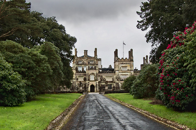 Mansion dominates the estate that is home to Tregothnan Historic Gardens