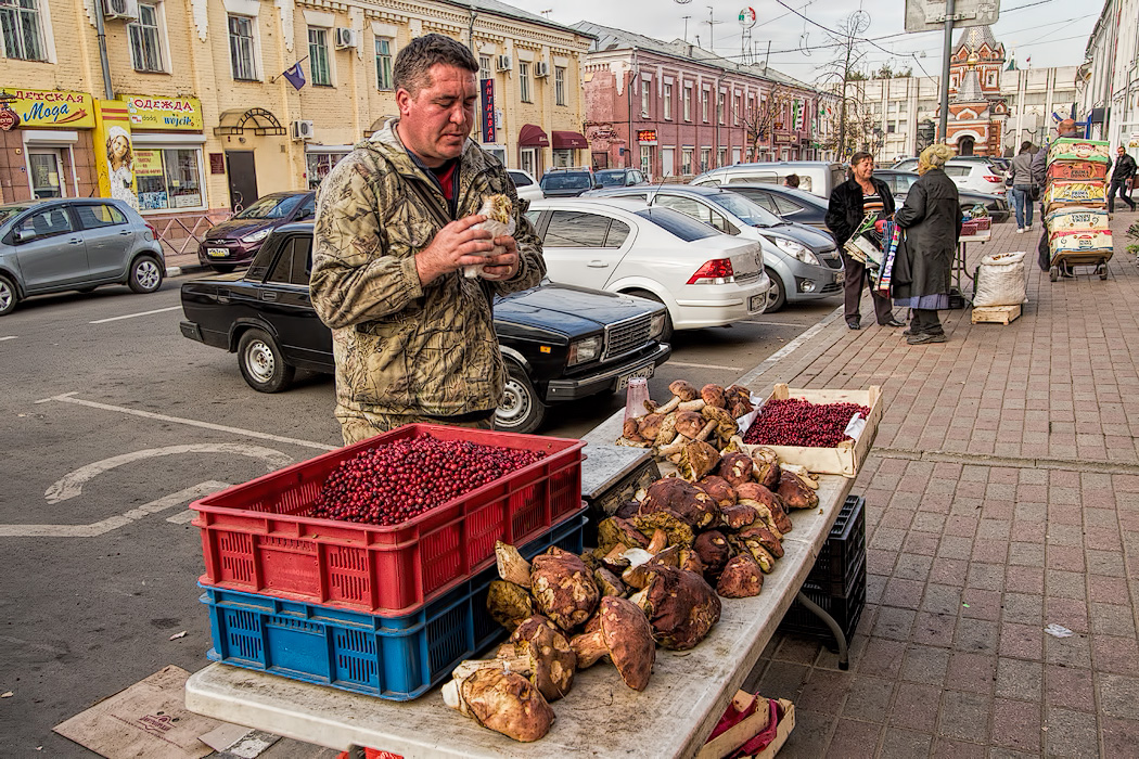 Selling fresh picked mushrooms and cranberries in Yaroslavl, Russia