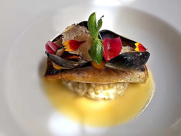 Appetizer at Borkonyha Restaurant: Sea Bream on a bed of risotto and beet root; topped with mussels, shaved truffle slices, pearl onion segments, and edible flowers; finished with a rich butter sauce