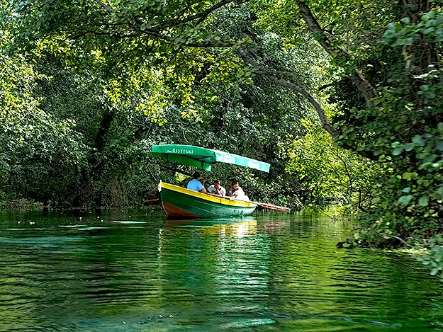 Boat trip to the head of the springs, the major source of water for Lake Ohrid