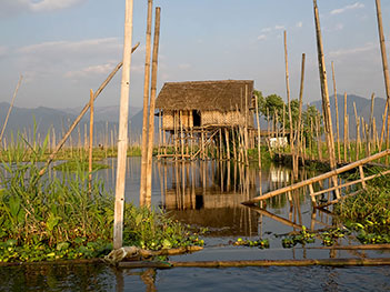 Stilt house on Inle Lake in Myanmar, with floating gardens surrounding the home