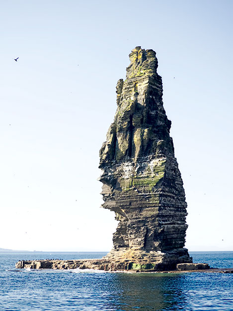 The sea stack at the Cliffs of Moher is home to a variety of nesting sea birds
