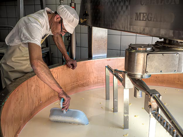 Cheesemaker at Fruitiere of Bouverans performs a clean break test on curd with a plastic shovel, to see if it is ready to cut