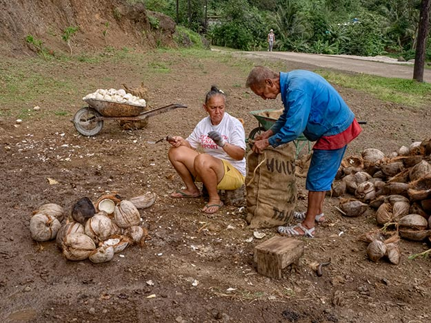 Couple on Fatu Hiva shuck the husks off coconuts in preparation for drying and shipping on the Aranui 5