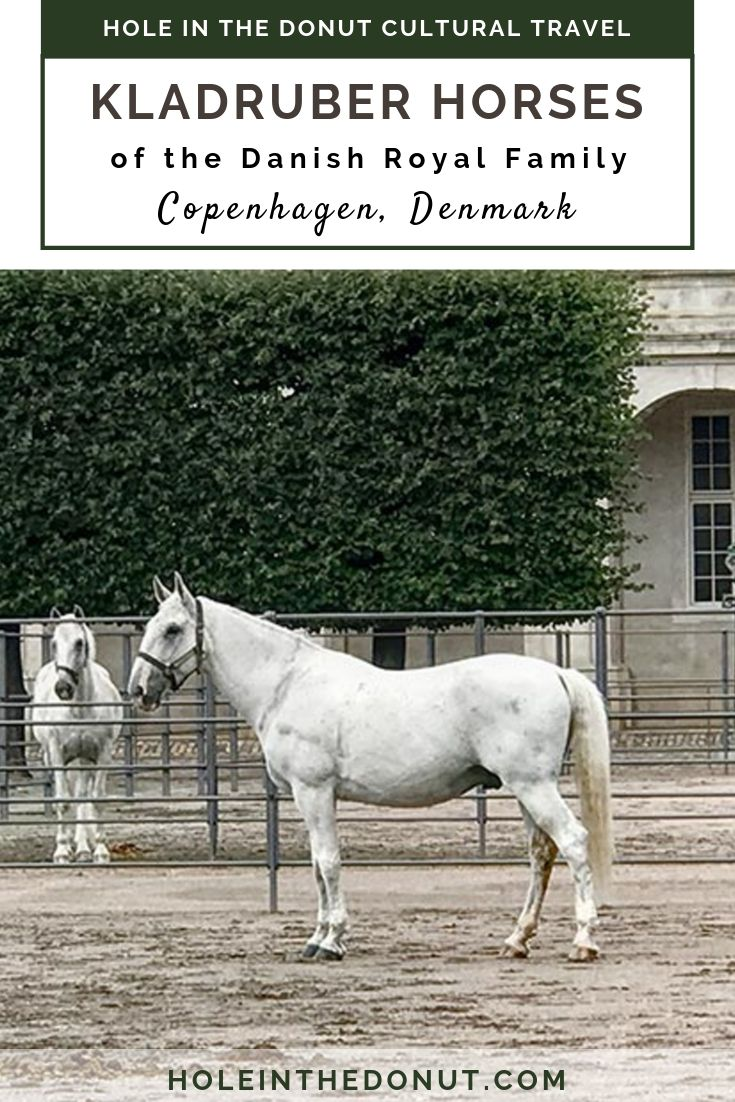 In 1994, the Danish Royal Family acquired six Kladruber horses to pull the Queen\'s carriage. See them at the Royal Stables behind Christiansborg Palace in Copenhagen, Denmark.