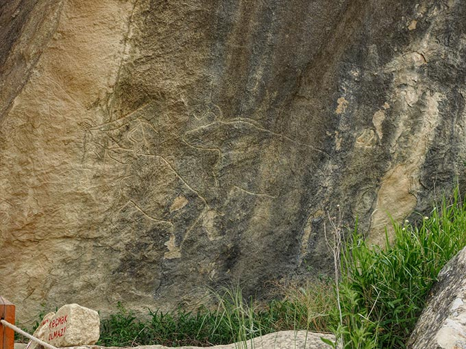 Ancient petroglyphs of bulls carved into the rocks at Gobustan National Park