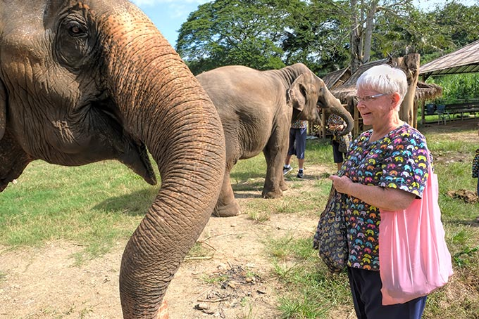 Here, ellie, ellie, ellie! Want a little sugar cane? At Kanta Sanctuary, we were allowed to roam among the herd to feed the elephants.